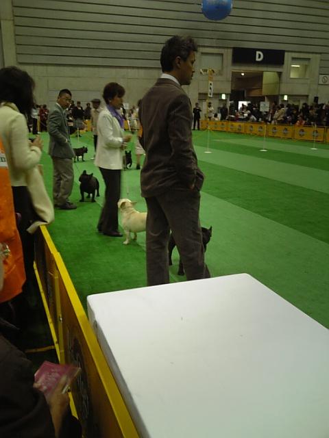 20071222_ドッグフェスティバル�@.JPG