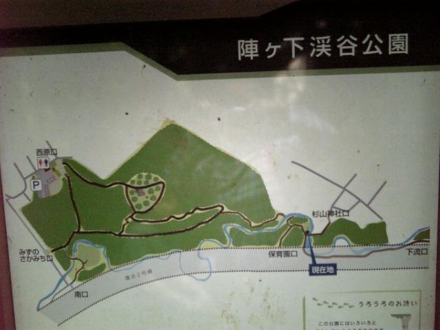 20080616_陣ケ下渓谷公園�@.jpg
