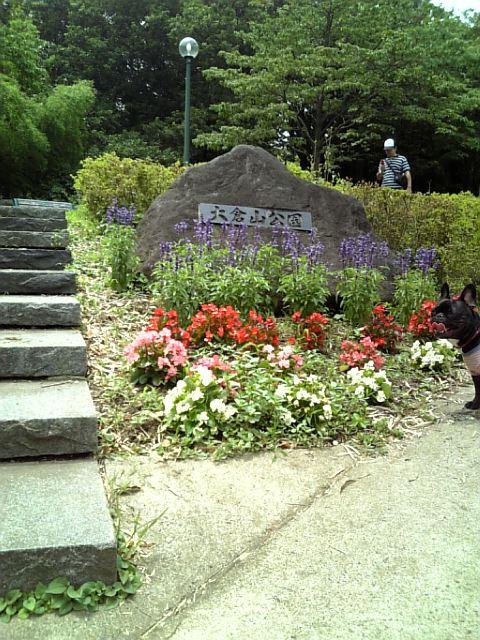 20080711_大倉山公園�@.jpg