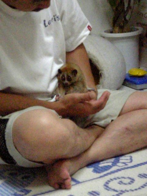 20080731_突然のお誘い�I.jpg